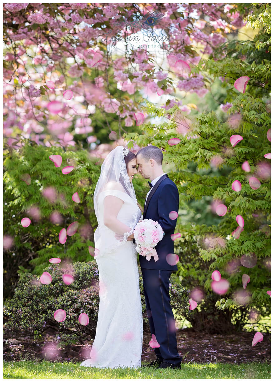 Bride and groom under cherry blossom wedding photography Dumbarton park Life in Focus Portraits wedding photographer Cardross Dumbarton