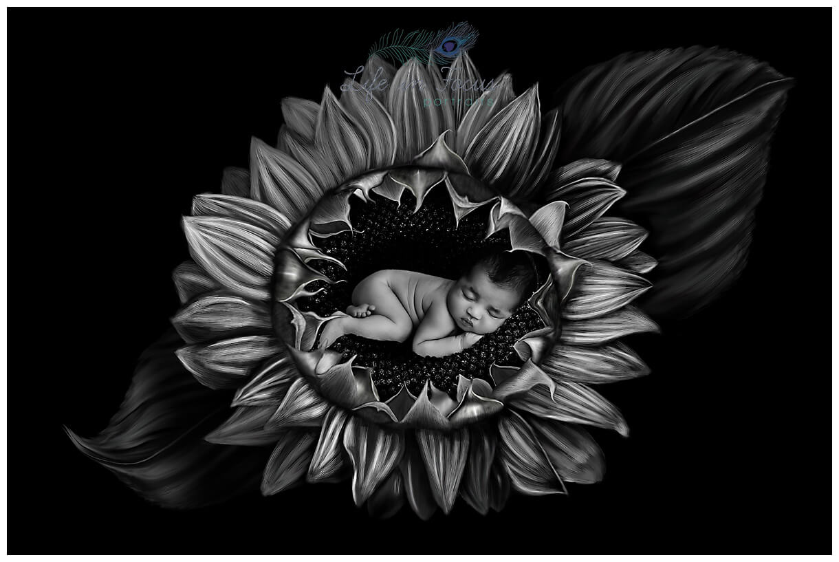 newborn baby digital art Life in Focus Portraits newborn baby photographer Cardross Dumbarton